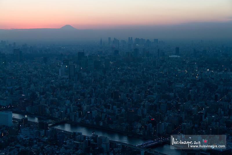 fuji sunset over tokyo / 東京で富士山の日没