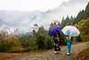 Dreamy Mountain Scene in Miyoshi (Iya Valley, Japan)