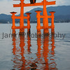 Floating Torii at High Tide Floodlit.<br /> Miyajima, Hiroshima, Japan.