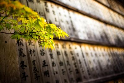 Seiryo-ji donation plaques (Kyoto, Japan)