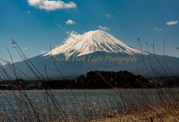 Mt. Fuji on a Sunny Day.