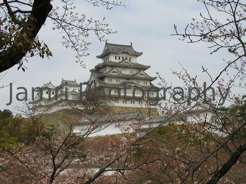 Himeji Castle through the trees, Himeji, Hyogo-ken, Japan