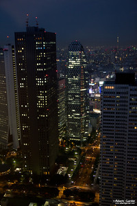 View from Tokyo Metropolitan Government Building, Japan