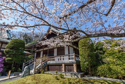 Hokokuji || Kamakura