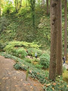 Japanese Garden, Portland, OR, 23 Oct 2005