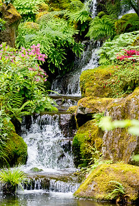 More waterfalls with flowers