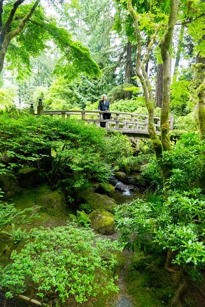 A wooden bridge in the Garden