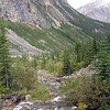 On the trail to Edith Cavell, looking down creek, to Park Area