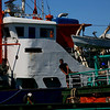 Bugis cargo ships in Surabaya's harbor.