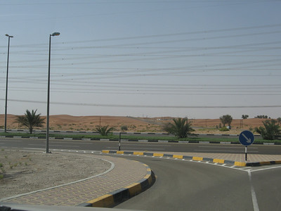 Across the road from the huge house is the desert(and lots of power lines). There are some camels out there on the left.