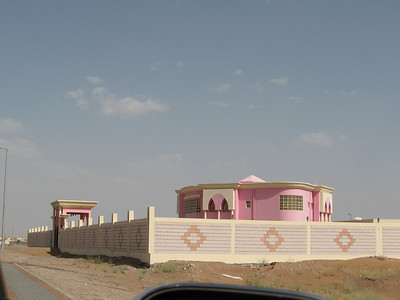 Good taste took a holiday when this place was painted.  What colour blind numbat thought this was a good idea?  There's no rational reason to paint a house this colour. It's a confection, it's an assault on the eyes, it's an Arabic Barbie house!