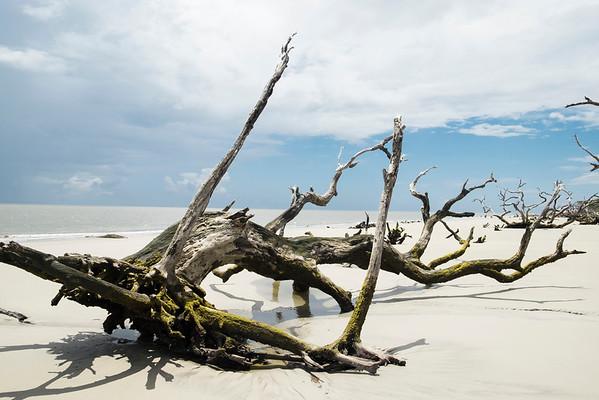 Jekyll Island, Georgia