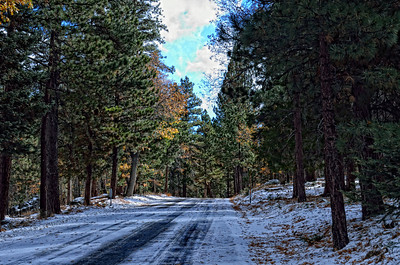 On way to Jenks Lake, Angelus Oaks, San Bernadino Mountains