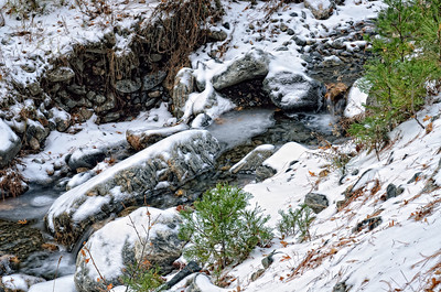 Angelus Oaks winter stream not yet frozen