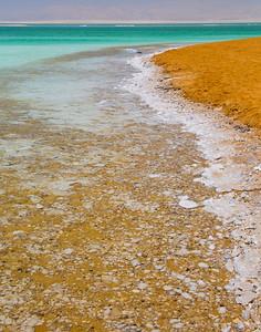 the shoreline is crusty salt