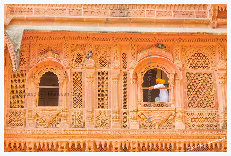 Secretly Observing Me | Mehrangarh Fort, Jodhpur (The Blue City)