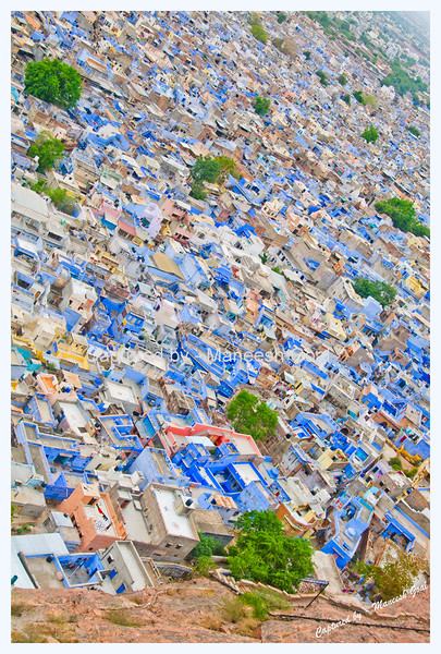 Jodhpur (The Blue City)