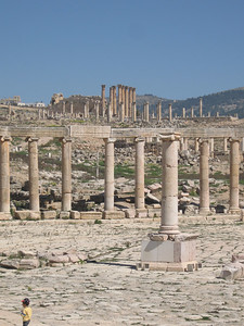 A few of the columns at the forum.  There are 56 in total.