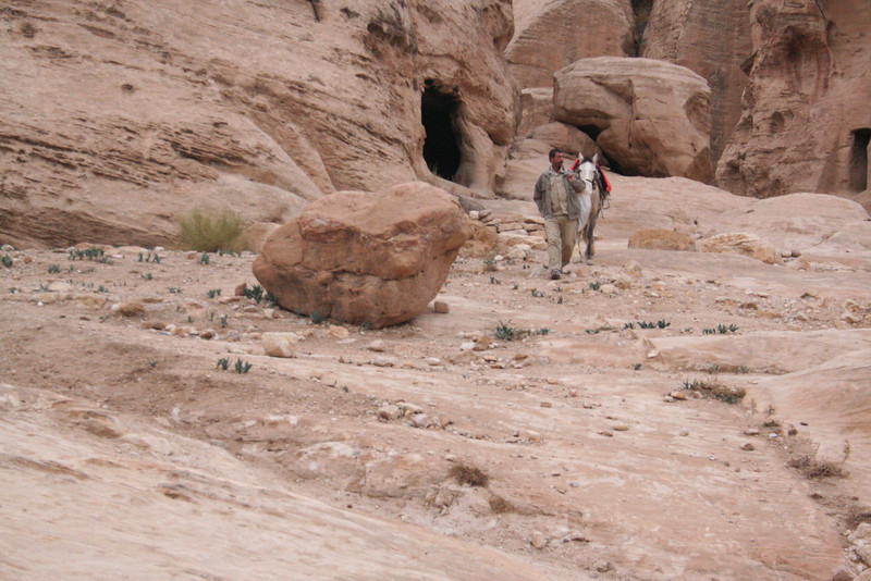 Bedouin with donkey - they rent the donkey for 20 JD