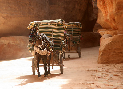 Petra - The Siq - Horses and carriages race up and down The Siq carrying passengers between the main entrance and The Treasury. The water channels cut into the walls and a section of the Roman paving can also be seen in this photo.