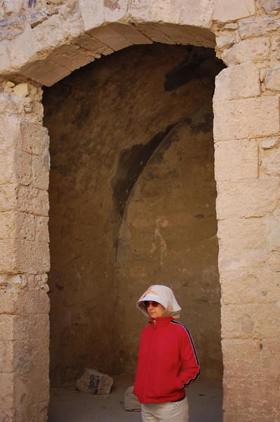 Karak Castle (2)