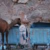 Wadi Rum (3)