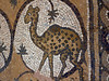 Although these mosaics are not nearly as fine as those of Madaba or Mt Nebo,  they were fun.