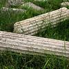 Corinthian columns in the spring grass.