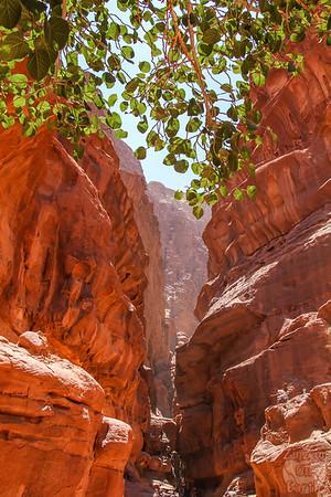 Wadi Rum, Jordan: Khazali canyon 2