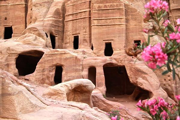 Street of facades Petra photo 3
