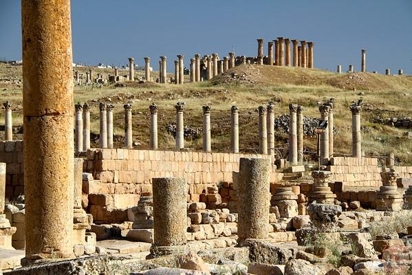 temples ruins, Jerash, Jordan