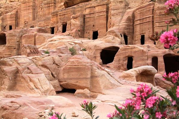 Street of facades Petra photo 4