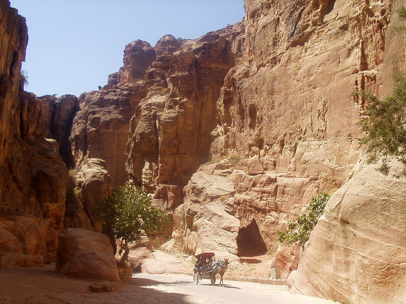 To reach the city of Petra, you have to traverse a narrow gorge (the Siq); you can either walk or take a carriage