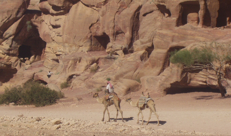 The preferred mode of transportation in Petra