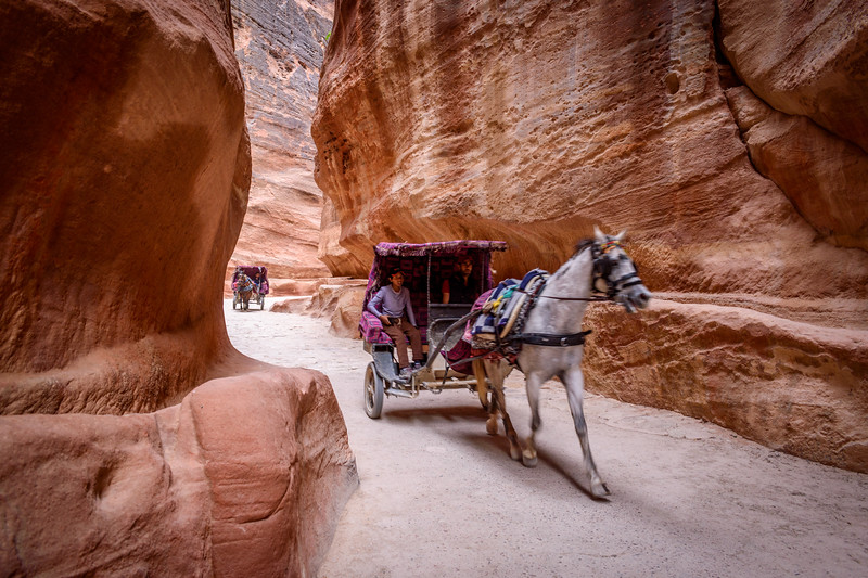 Horse and carriage, the Siq 1