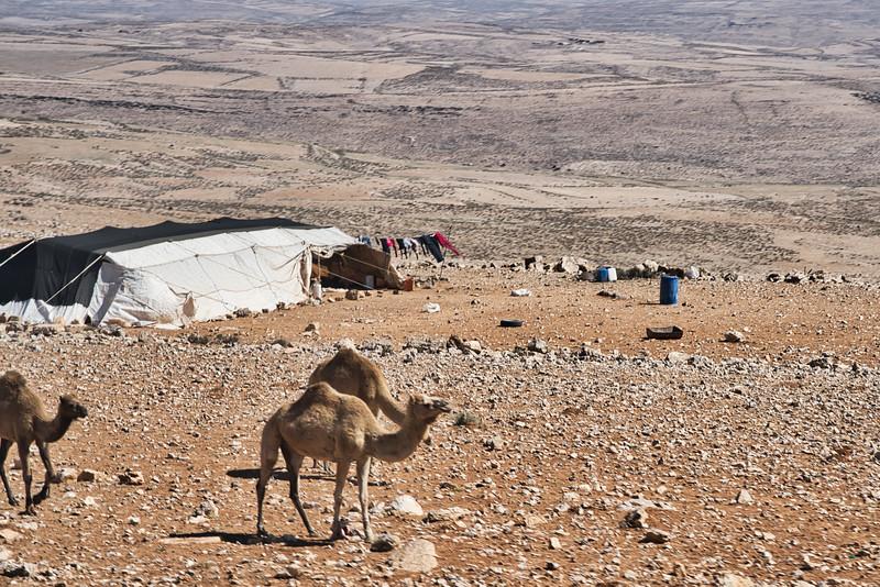 Jordanian Bedouin Camp