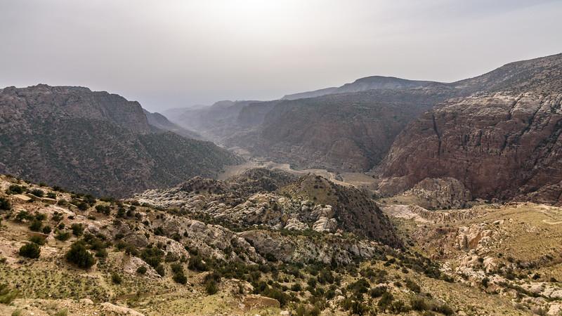 Dana landscape