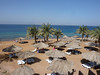 Same day.  Arrival to our resort on the Coastal Strip at Aqaba.  It is nice, but the best is under the water.