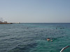 I did my first of two excellent snorkels late that afternoon.  It is easy as heck too: go to the end of the pier and walk into the water.  For anyone who goes to Jordan and likes snorkeling:  Don't miss it !