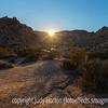 Sunrise in Joshua Tree National Park