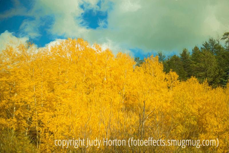 Autumn Near Santa Fe, Hyde Park