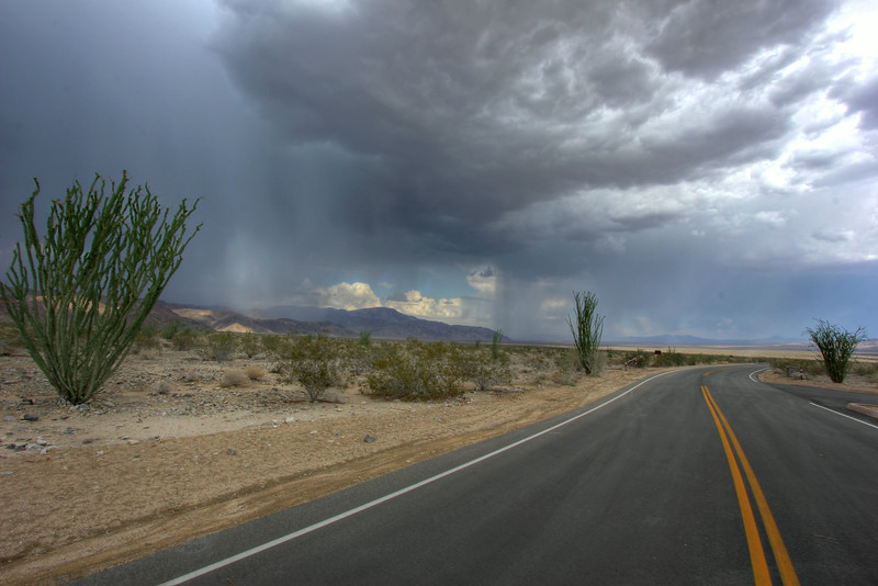 Road To The Rains