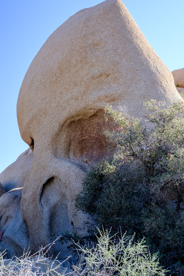 why yes, they do call this Skull Rock