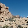 to Mastodon Peak