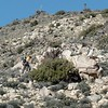 """Lead group to bushwhack to Keys View """"better view"""""""