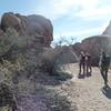 Day 1 Split Rock Trail