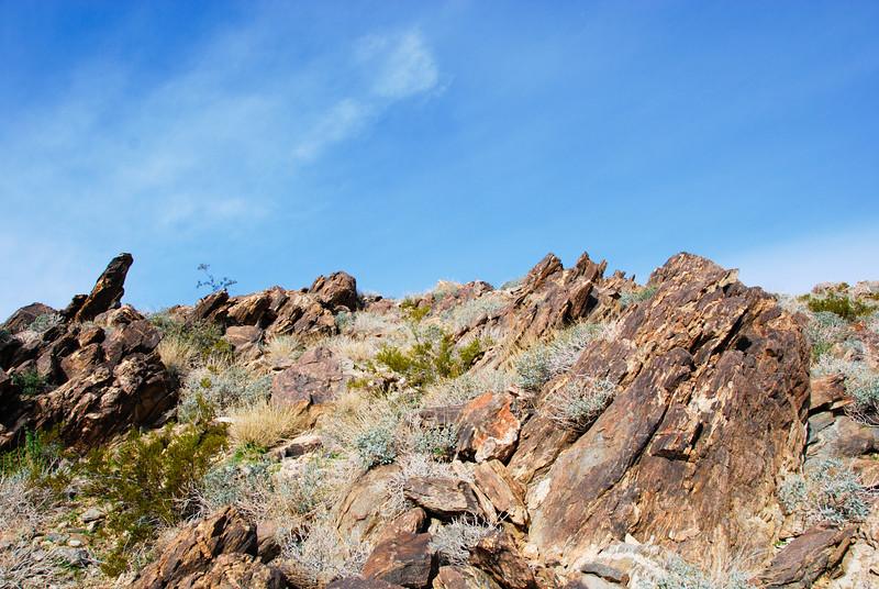 Slanting rocks on the 49 Palms Oasis trail