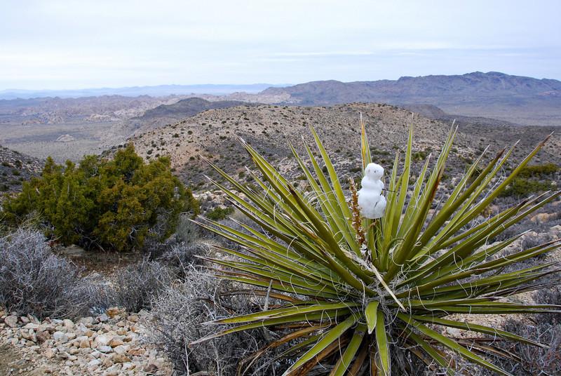 Mini-snowman on the Ryan Mountain trail.