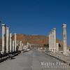 Palladius street, Scythopolis