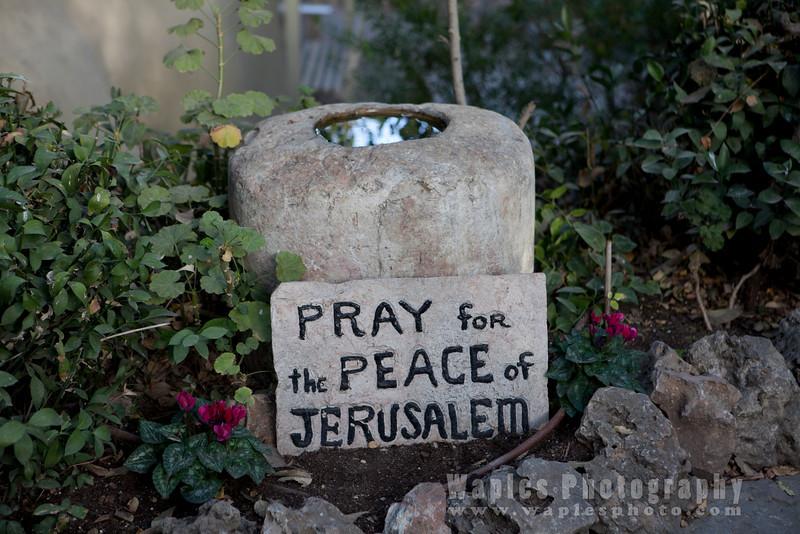 Pray for Peace in Jerusalem